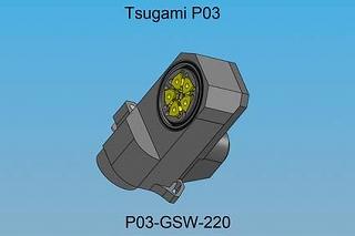 P03-GSW-220-TP-1[1]